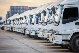 white truck fleet